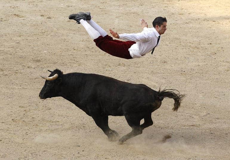 bull-jump