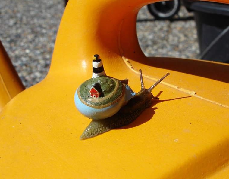snailpimp