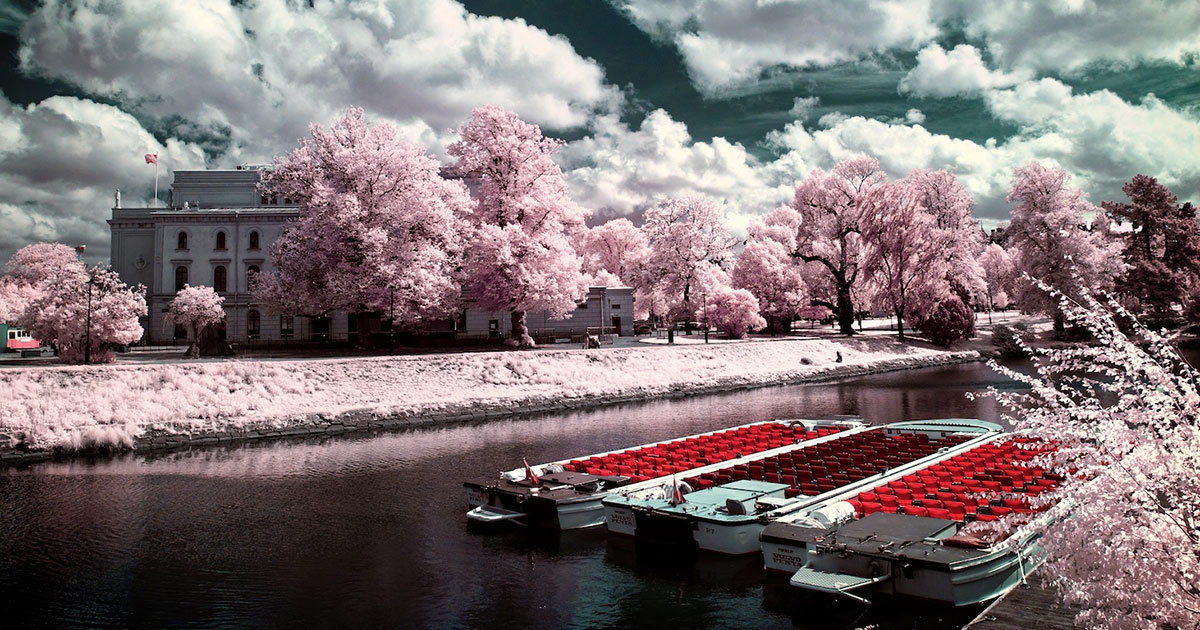 Les plus belles photographies infrarouge