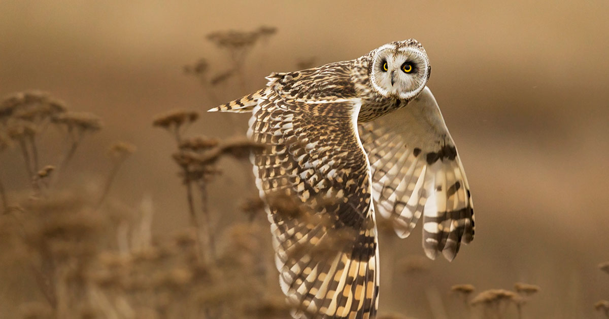 Concours National Geographic 2014